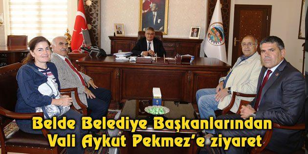 Belde Belediye Başkanlarından Vali Aykut Pekmez'e ziyaret