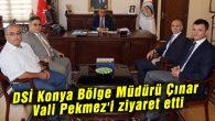 DSİ Bölge Müdürü Çınar Vali Pekmez'i ziyaret etti