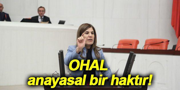 İlknur İnceöz: OHAL anayasal bir haktır!