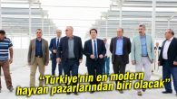 Türkiye'nin en modern hayvan pazarlarından biri olacak
