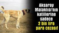 Aksaray Malaklısı'nın katillerine sadece 2 bin lira para cezası!