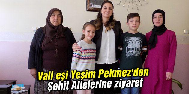 Valieşi Yeşim Pekmez'den Şehit Ailelerine ziyaret