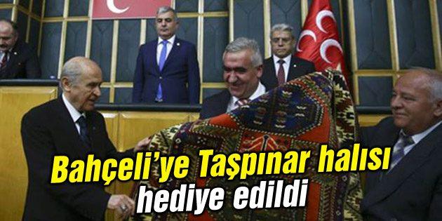 MHP İl Başkanı Kaşlı'dan Bahçeli'ye Taşpınar halısı