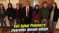 Vali Aykut Pekmez'e ziyaretler devam ediyor