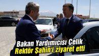 Bakan Yardımıcısı Çelik, Rektör Şahin'i ziyaret etti