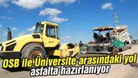 OSB ile Üniversite arasındaki yol asfalta hazırlanıyor