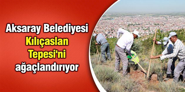 Aksaray Belediyesi Kılıçaslan Tepesi'ni ağaçlandırıyor