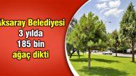 Aksaray Belediyesi 3 yılda 185 bin ağaç dikti