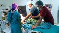Genel anestezi ile engelli hastalar için özel hizmet