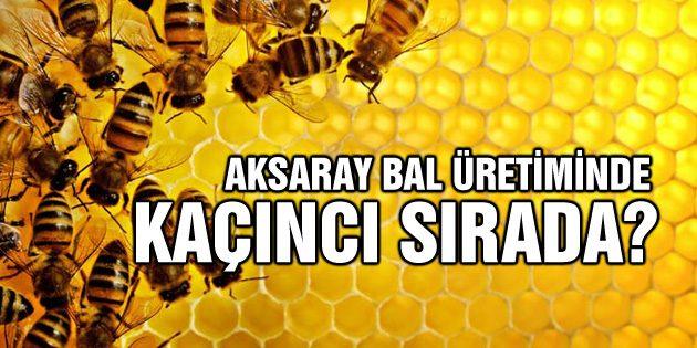 Bal üretim haritası çıktı Aksaray kaçıncı sırada?