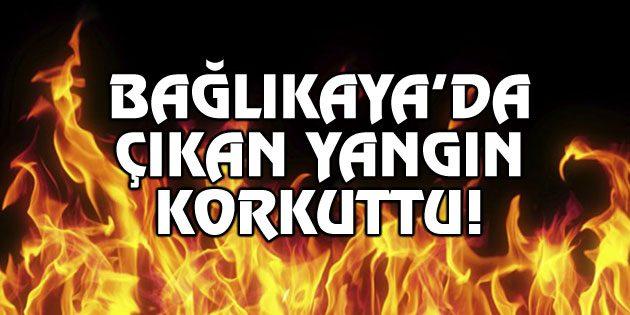 Bağlıkaya'da çıkan yangın korkuttu!