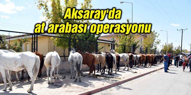 Aksaray'da at arabası operasyonu