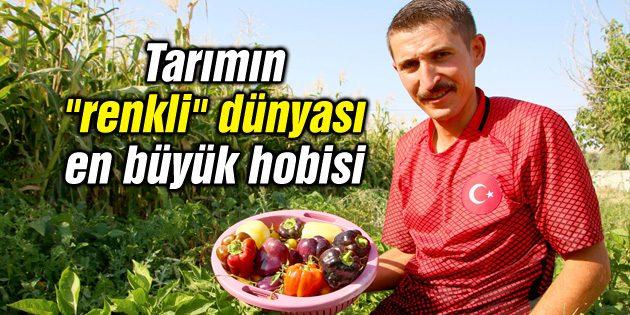 """Tarımın """"renkli"""" dünyası en büyük hobisi"""
