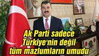 Ak Parti sadece Türkiye'nin değil, tüm mazlumların umudu