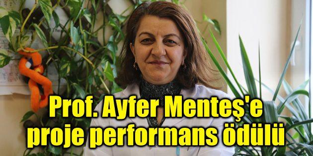 Prof. Ayfer Menteş'e proje performans ödülü