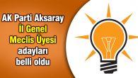 Ak Parti Aksaray İl Genel Meclis Üyesi adayları