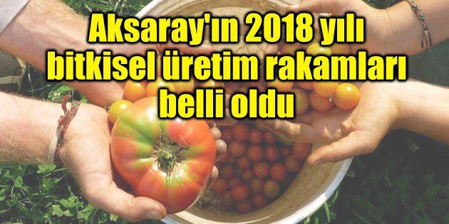 Aksaray'ın 2018 yılı bitkisel üretim rakamları belli oldu