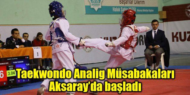 Taekwondo Analig Müsabakaları Aksaray'da başladı