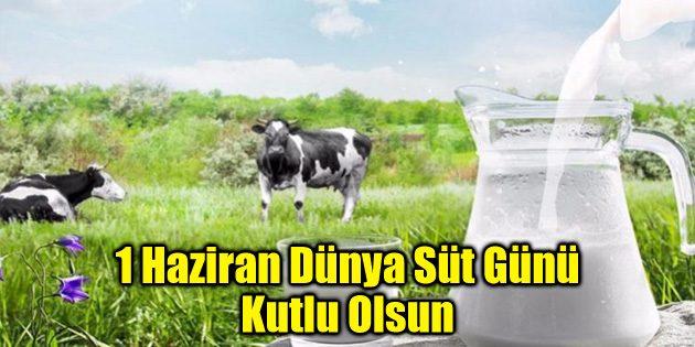 1 Haziran Dünya Süt Günü Kutlu Olsun