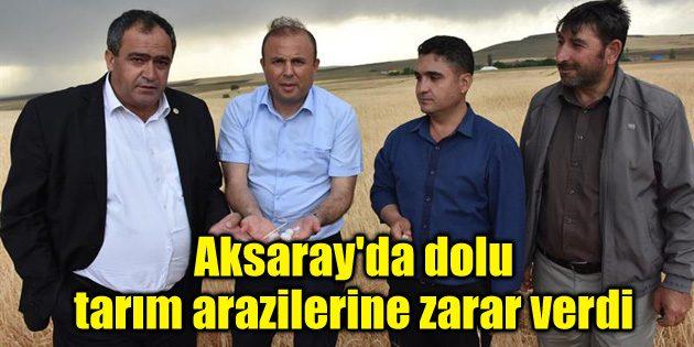 Aksaray'da dolu tarım arazilerinde zarara neden oldu