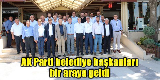 AK Parti belediye başkanları bir araya geldi