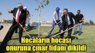 Aksaray'da hocaların hocası onuruna çınar fidanı dikildi