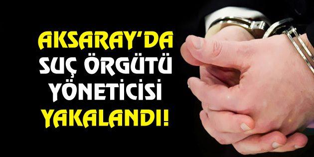 Aksaray'da suç örgütü yöneticisi yakalandı!