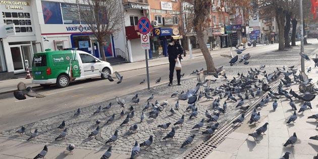 HAYDİ polisleri sokak hayvanlarını unutmadı