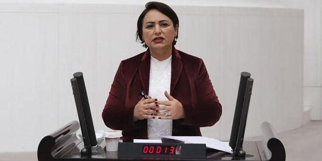 Müzeyyen Şevkin söz verdi, mecliste Aksaray'ı konuştu