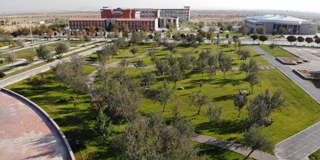 Aksaray Üniversitesi'nde yeşil alan varlığı artıyor