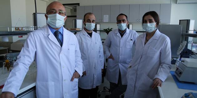 ASÜ'de, hücresel tedavi için çalışmalar sürüyor