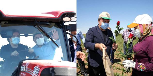 Vali Aydoğdu traktörle tarlayı sürdü, kadın çiftçilere gül verdi
