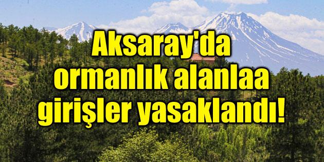 Aksaray'da orman alanlarına girişler yasaklandı